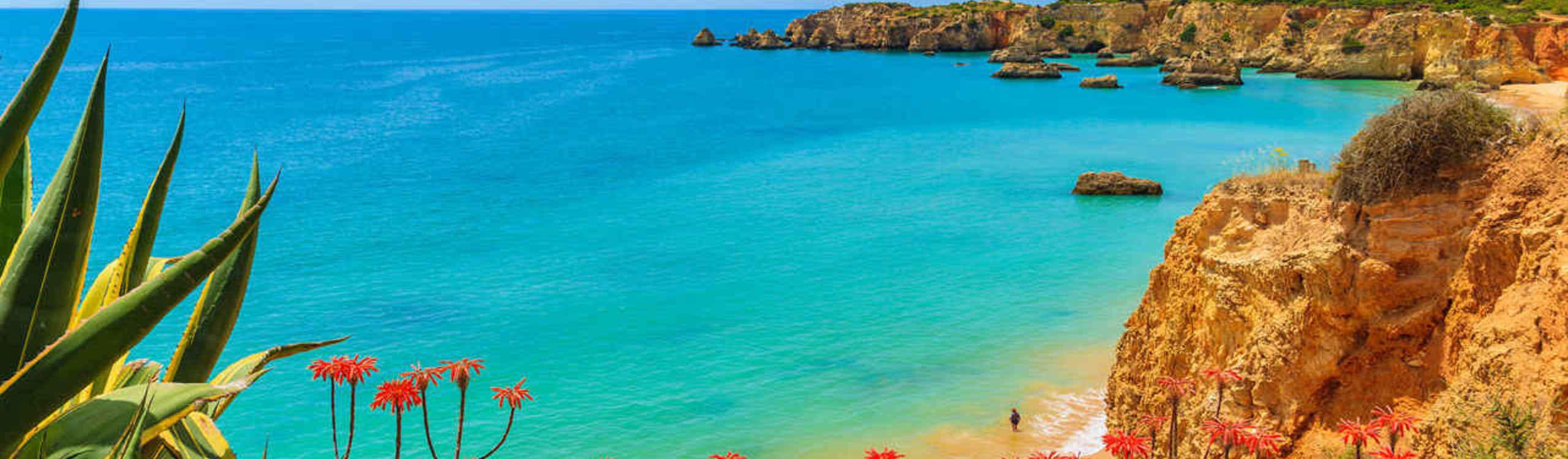 Huur & verkoop van villa's Portugal
